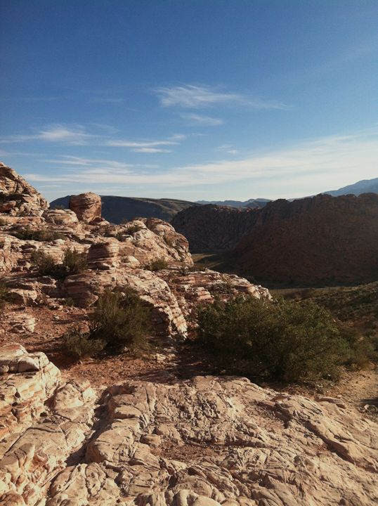 Red Rock Canyon - Lizzy Lombardo