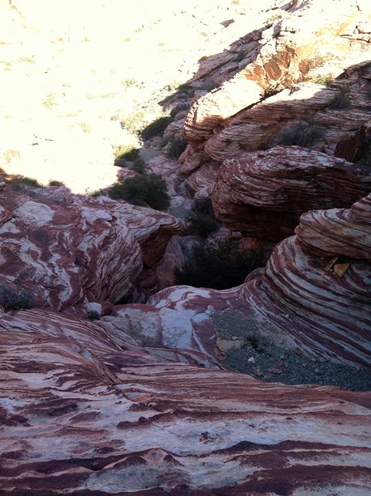 Red Canyons - Lizzy Lombardo