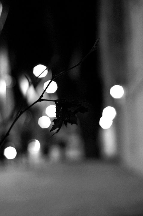 Street lights (blurry) - Free Style Art