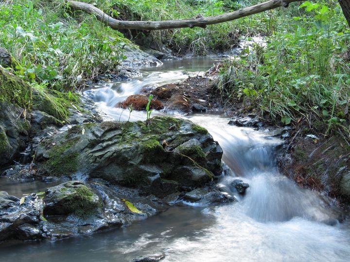 The winding river - NVT