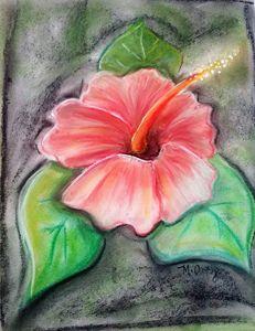 Flor de maga Puerto Rico - Maria Ortiz