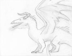 The black dragon