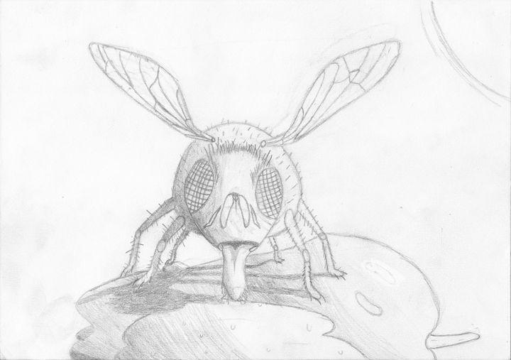fly eating apple (sketch) - The broken teleporter