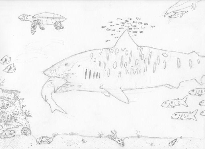 tiger shark in the ocean - The broken teleporter