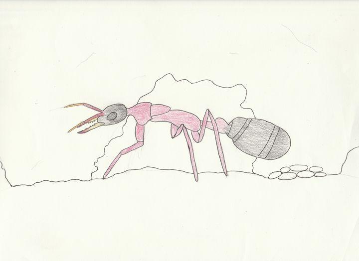 bull ant queen - The broken teleporter