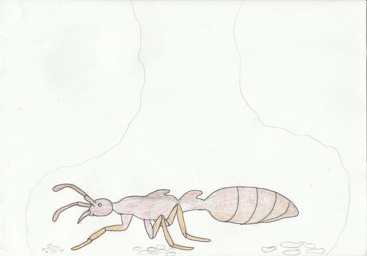 Army ant queen - The broken teleporter