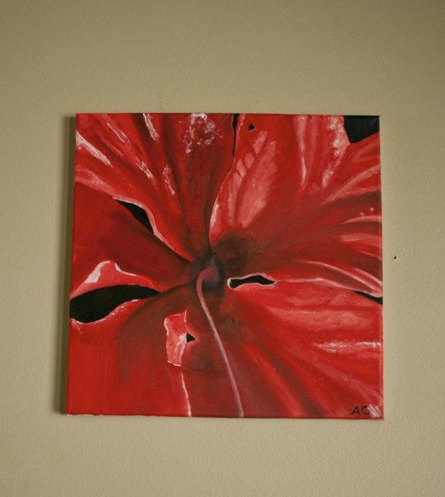 Red Hibiscus - Paintings by Adam Cottone