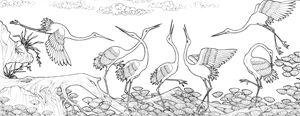 Spare & Crane - Trinhmai Art