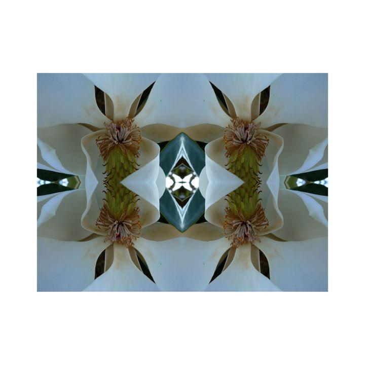 steel mag - PhotoBanc