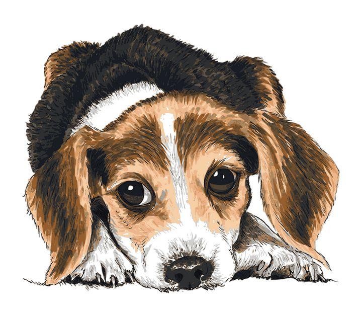 Cute puppy dog - Paula's Art