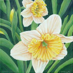 Spring Daffodils - Melissa Frisella