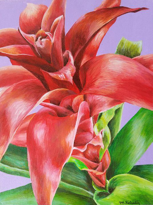 Bromeliad Flower - Melissa Frisella