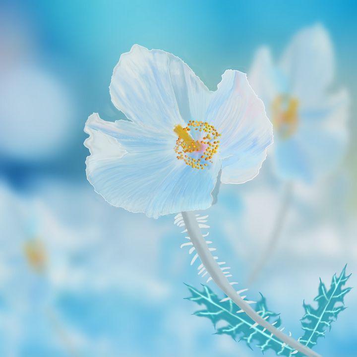 Southwestern Prickly Poppy - David Montgomery
