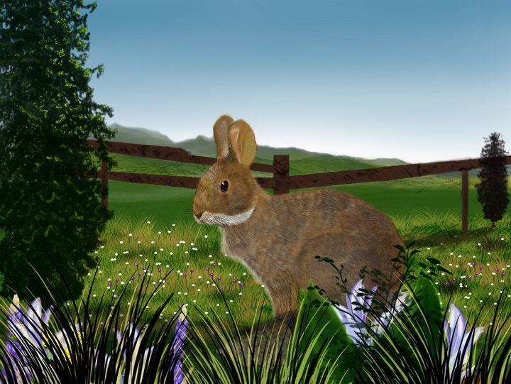 Field Rabbit - David Montgomery
