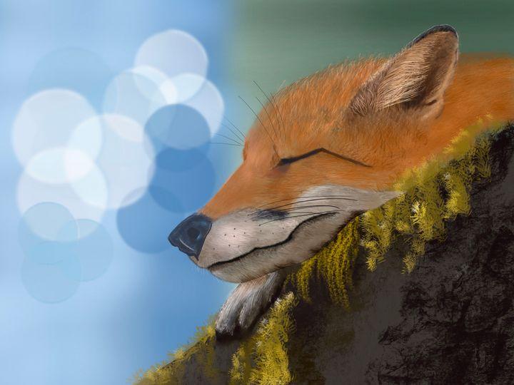 Napping Fox - David Montgomery