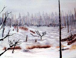 Winter Fields - David Montgomery