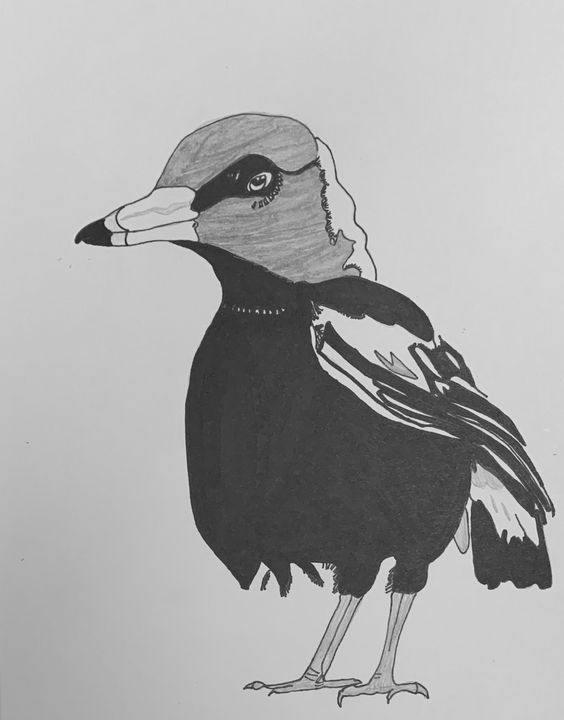 Bird Talk - Doobledoodle