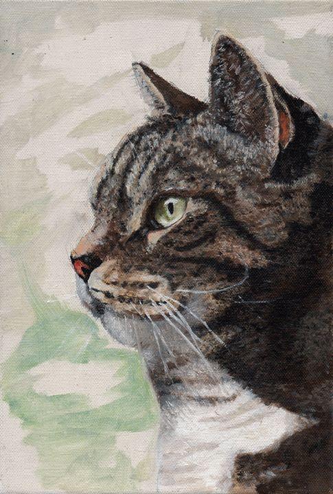 Cat - Hannah Hsu