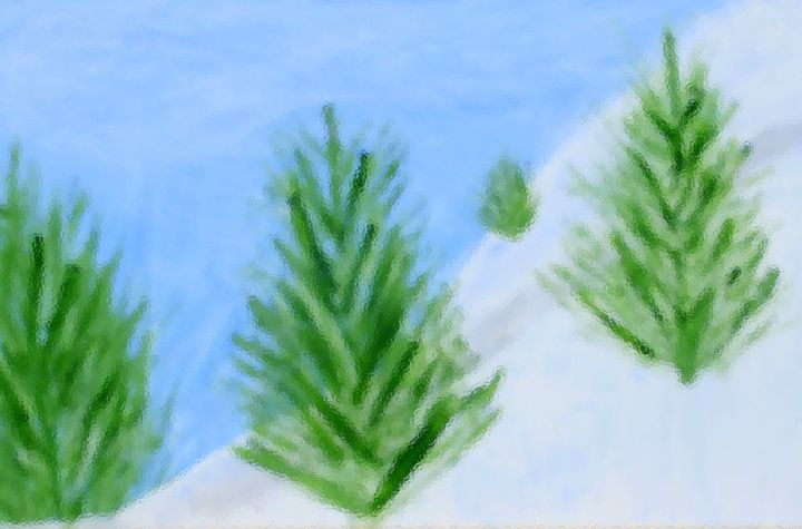 Frosted Trees - Emily's Art