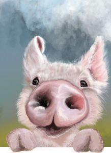 Fiddleford the pig