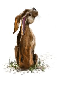 The Thoughtful Hare