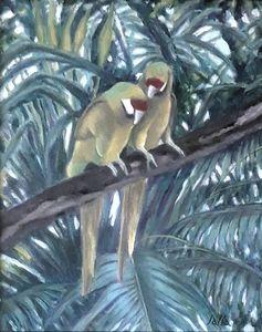 Parrot Duet
