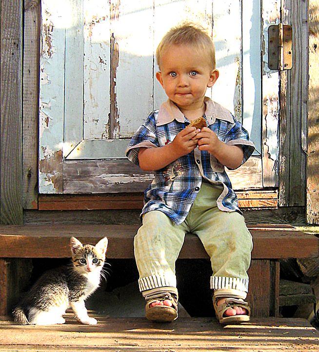 Kittens - Yury Yanin