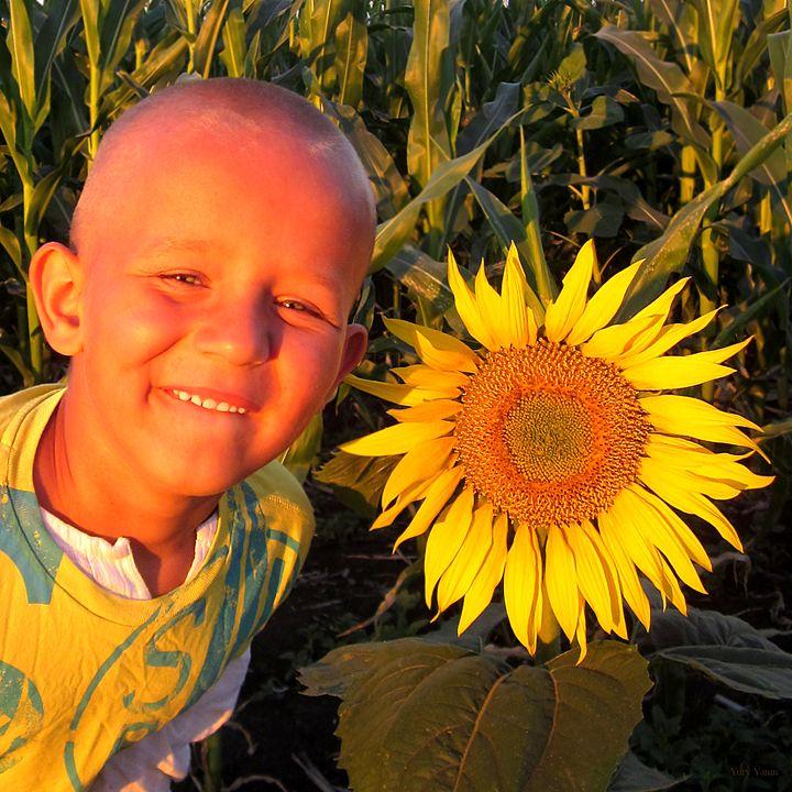 Sunflower - Yury Yanin
