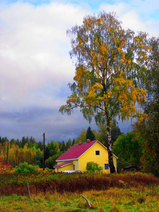 Autumn tunes - Yury Yanin