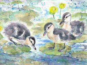 Ducklings in water lilies