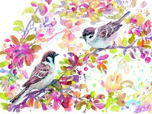 Sparrows in red