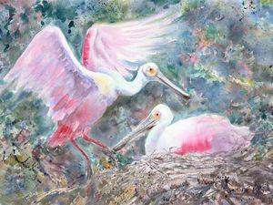 Pair of Roseate spoonbills in nest