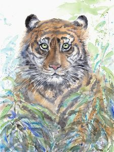 Tiger in the thickets
