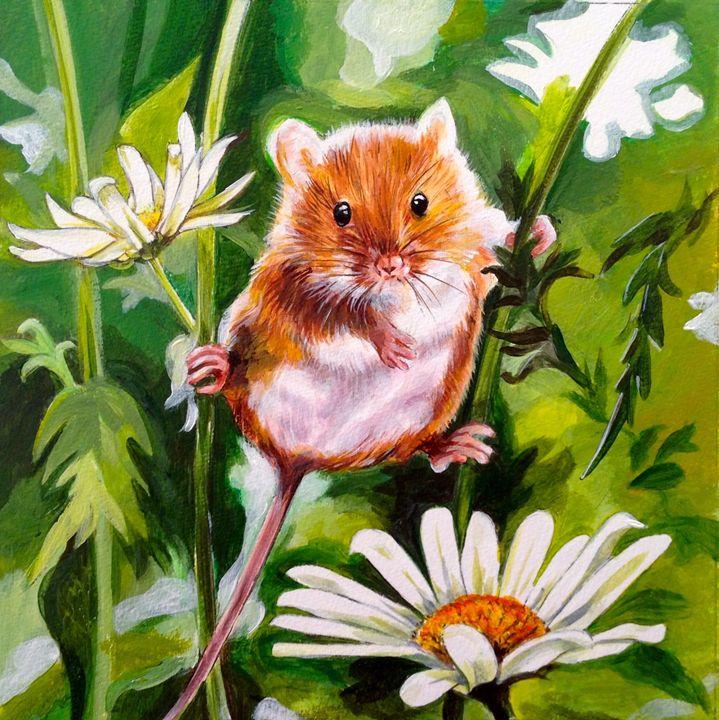Daisy Mouse - Anne Traynor