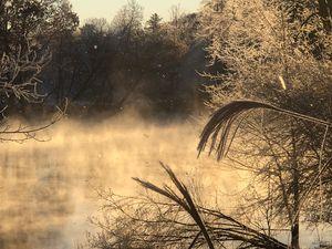 Frosty Mist