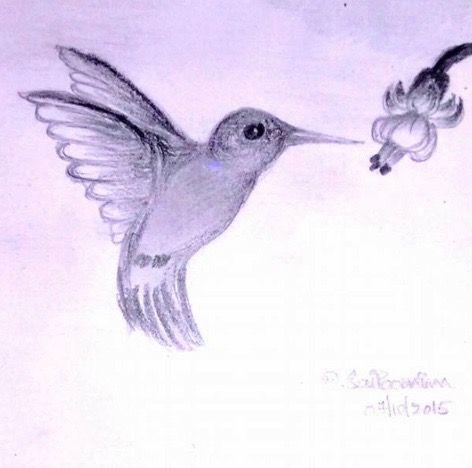 Humming Bird - SaiPoornima Kaushik