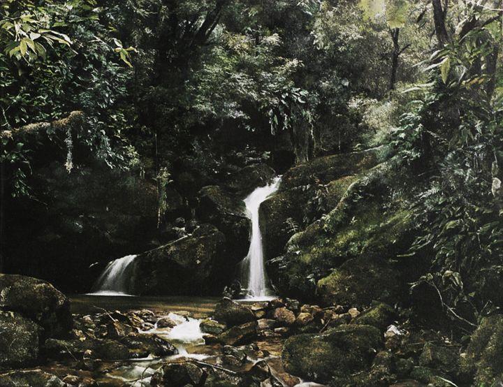 The First Waterfall - Predrag Vitezovic