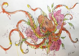 Water colored octopus