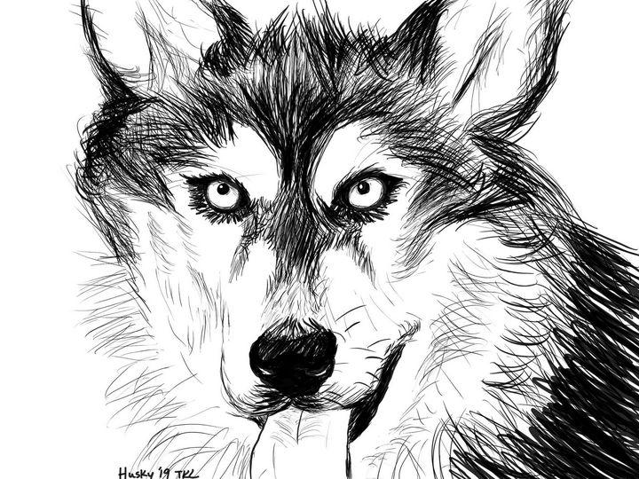 Husky - Abiding Pushpin
