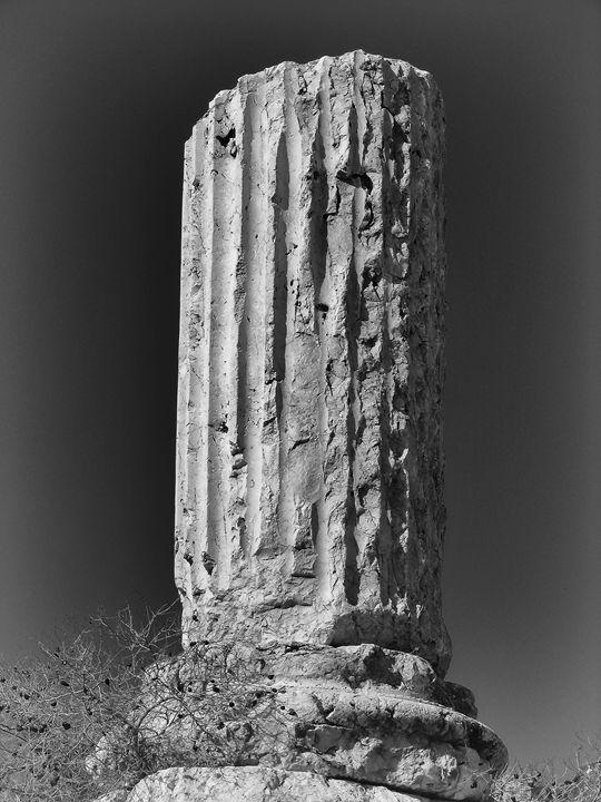 Column - MaryLanePhotography