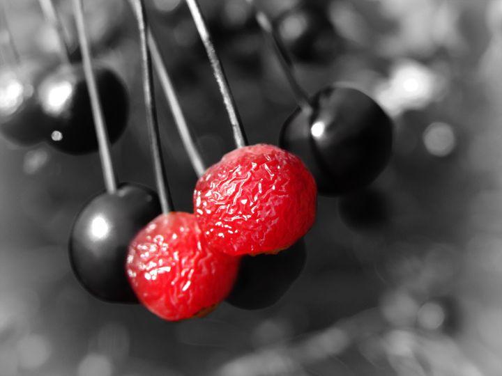 Berries - MaryLanePhotography