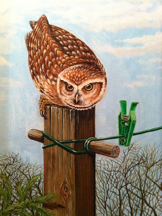 The Little Owl - george telford