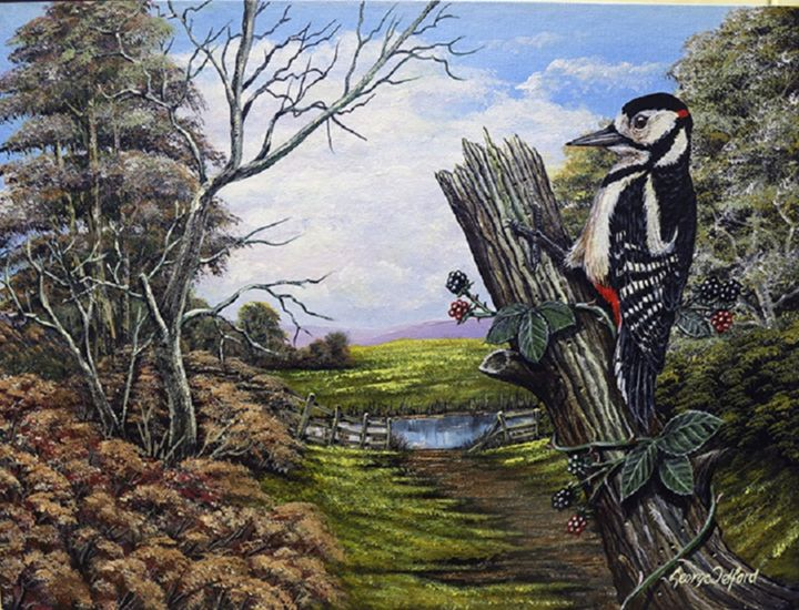 The Lesser Spotted Woodpecker - george telford
