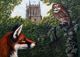 Tawny Owl  and Fox