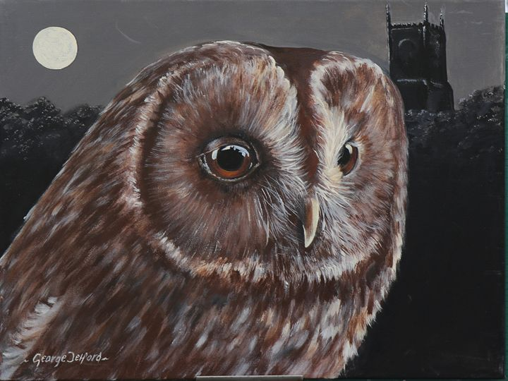Tawny Owl - george telford