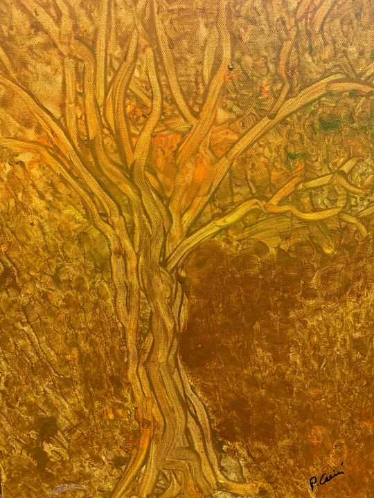 tree Illusion - Casini Gallery