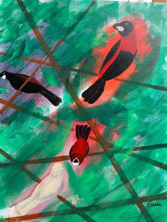Screaming Bird - Casini Gallery