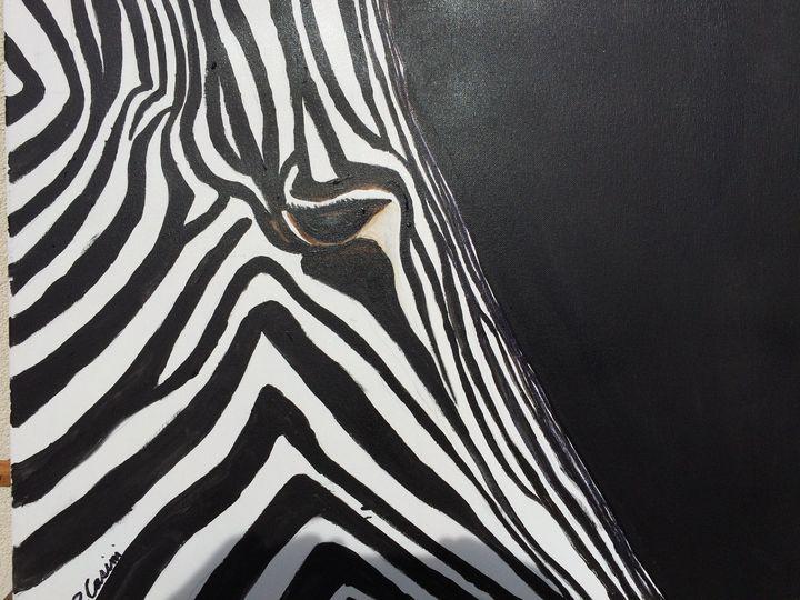 Zebra - Casini Gallery