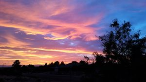 Swiftly New Mexico