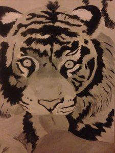 TigerTongue